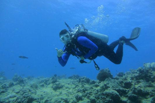 Scuba Diving in the Andaman Sea