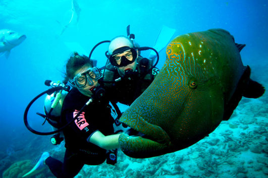Scuba Divers spots a fish in the Andaman Sea