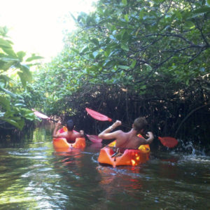 Kayaking in the backwaters if Andaman