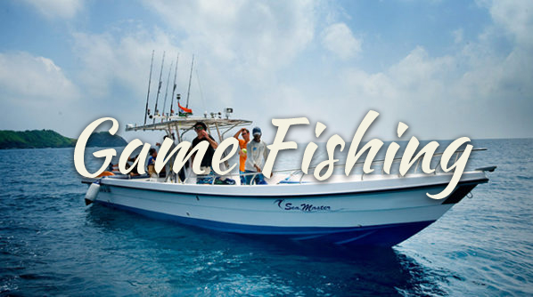 game fishing in the Andamans