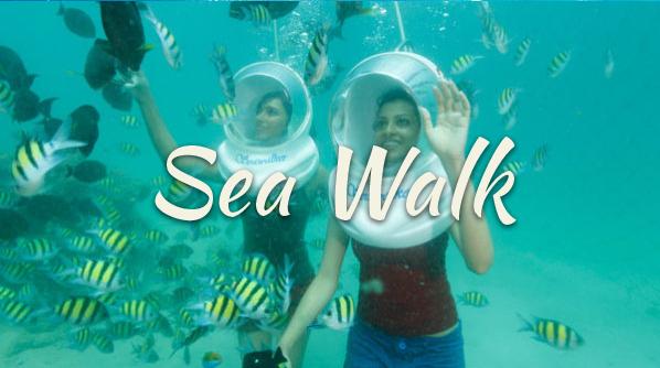 Sea Walk in the Andaman Sea