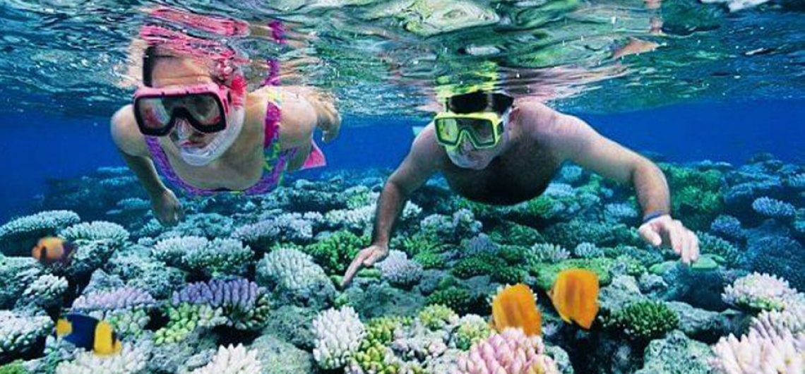 Image result for scuba diving in andamans