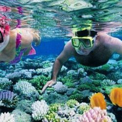A couple Snorkelling in the Andaman Sea