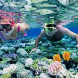 A couple snorkelling and exploring the exotic marine life in the Andaman Sea.